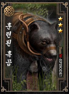 훈련된 흑곰